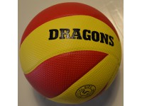 Dragon volleybal